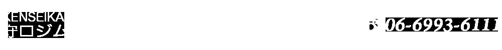 楽しく心と体をリフレッシュ!KENSEIKAI 守口ジム・本格空手実践&空手エクササイズ|大阪府守口市