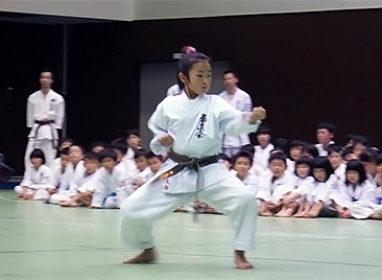 第5回拳正会東海空手道選手権大会(2014年)