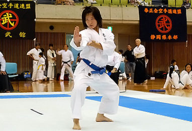 第36回 拳正会 全国空手道選手権大会(2010年)
