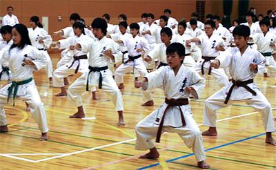 第39回 拳正会 全国空手道選手権大会(2013年)