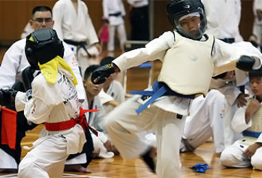 第38回 拳正会 全国空手道選手権大会(2012年)